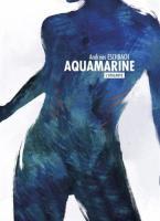 Aquamarine de Andreas  ESCHBACH (La Dentelle du Cygne)
