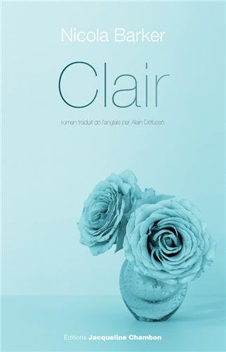 Clair : un roman transparent