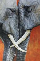 Mémentos - Mémoires d'éléphants