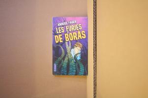 Les Furies de Borås de Anders FAGER (Pocket SF)